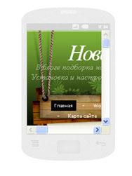 В Android вертикально 240 x 320: