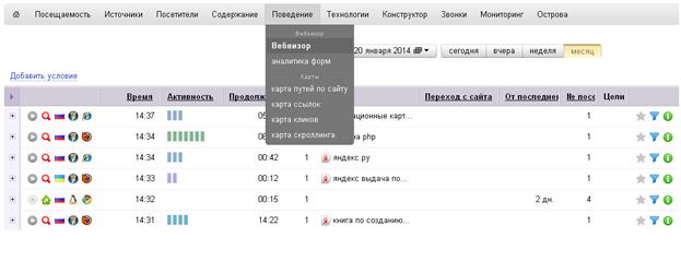 Отчеты вебвизора яндекс метрики